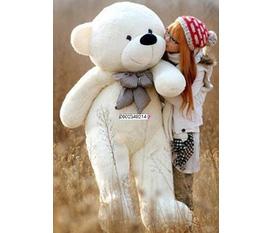 Gấu bông đáng yêu các loại.Teddy, Husky,Đoremon,Micky, khỉ,.....
