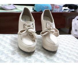 Chọn giày cho noel nào
