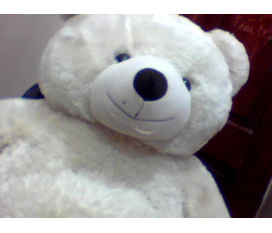 Thanh lí gấu bông siêu bự giá siêu rẻ