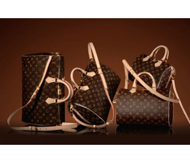 Túi Louis Vuitton......