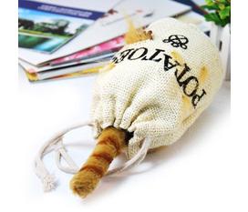 Mèo trong túi