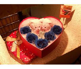 Quà valentine Socola bỉ, Ngon,rẻ, đẹp