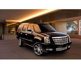 Cadillac Escalade Platinum 2012 gã khổng lồ dễ thương