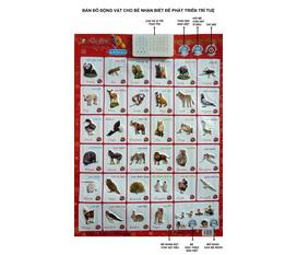 Bảng chữ cái tiếng việt và dấu có âm thanh, bản đồ động vật treo