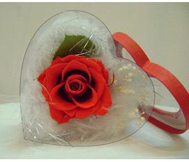 Hoa cho ngày 8 3, tình yêu bất diệt