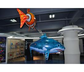 Quà tặng1 6.Bạn có tin nổi không, thật khó đỡ..một chú cá lượn lờ trên cao trong không khí mà không phải là dưới nước