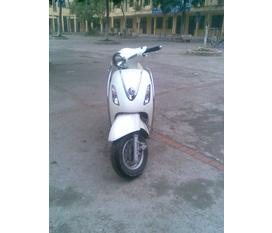 Bán xe ATTILA elizabeth màu trắng bs 30F7