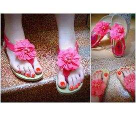 T s shop chuyên kinh doanh các loại giày dép nữ