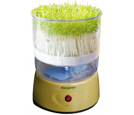 Trồng rau sạch tại nhà với máy trồng rau mầm Kangaroo kG262