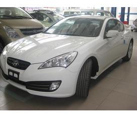 Hyundai Genesis 2013 Thỏa mãn đam mê