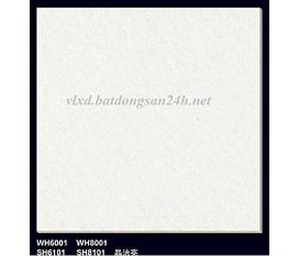 Đại lý phân phối Gạch bóng kiếng 60x60 vân Xà Cừ Trắng