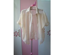 Topic 18 áo sơ mi nữ ,áo sát thân ,kiểu mới năm 2012