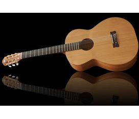 Guitar classical pro