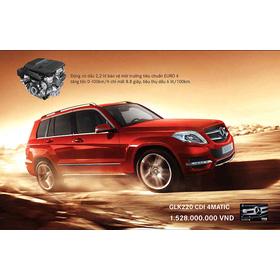 MERCEDES GLK220 MÁY DẦU 2013 mua sắm online Xe hơi