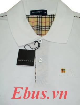 Áo phông Lacoste, ao phong lacoste, Áo lacoste, ao lacoste, áo phông lacoste giá rẻ, áo phông lacoste ở hà nội Ảnh số 9211240