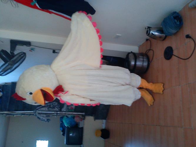 Cho thuê trang phục thú bông. trang phục hoạt hình, hóa trang, mascot, linh vật biểu diễn, linh vật mascot worldcup 2014 Ảnh số 30401673