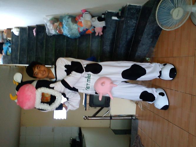 Cho thuê trang phục thú bông. trang phục hoạt hình, hóa trang, mascot, linh vật biểu diễn, linh vật mascot worldcup 2014 Ảnh số 30593782