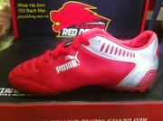 Ảnh số 53: Giày đá bóng puma - Giá: 150.000