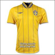 Ảnh số 16: Áo cầu thủ  Thụy Điển - home 2012 - Giá: 100.000