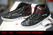nh s 83: CONVERSE CAO C DA - Gi: 290.000