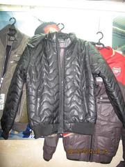 Ảnh số 56: Áo khoác nam phao body hongkong, bán sỉ thiên long 50 hàng gà - Giá: 350.000