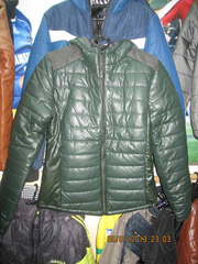 Ảnh số 28: Áo khoác nam phao body hongkong, bán sỉ thiên long 50 hàng gà - Giá: 350.000