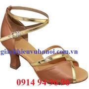 Ảnh số 65: Giày khiêu vũ ngoại nhập - Mã 65 - Giá: 350.000