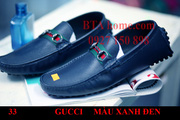 nh s 81: gucci - Gi: 950.000