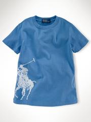 Ảnh số 91: Polo Ralph Lauren - Giá: 350.000