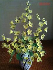 Ảnh số 2: Hoa lan vàng - Giá: 500.000