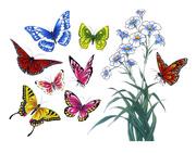 Ảnh số 1: Mẫu hình xăm con bướm - Giá: 1.200.000