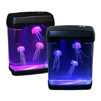 bể sứa jelly