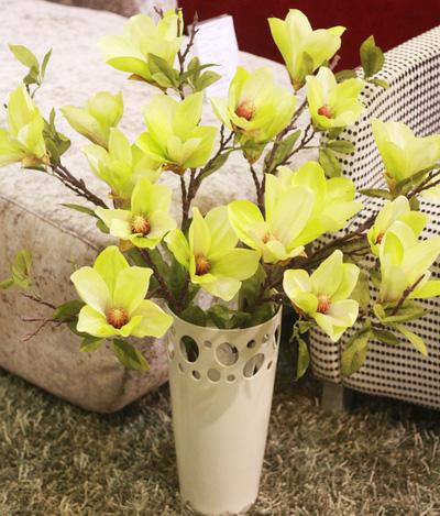 Hoa thảo tiên xanh
