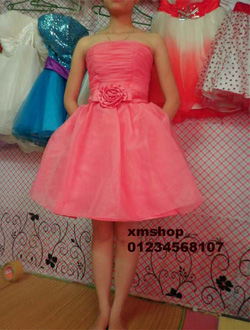 Ảnh số 81: váy dạ hội váy công chúa - Giá: 505.500.500