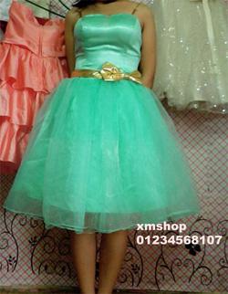 Ảnh số 91: váy dạ hội váy công chúa - Giá: 505.500.500