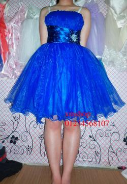 Ảnh số 97: váy dạ hội váy công chúa - Giá: 505.500.500