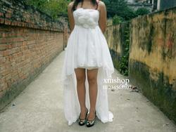 Ảnh số 39: váy prom - Giá: 500.550.000