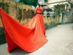 Ảnh số 90: váy prom - Giá: 900.550.000