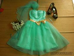 Ảnh số 54: váy dạ hội váy công chúa - Giá: 505.500.500