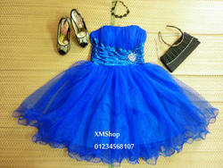 Ảnh số 26: váy dạ hội váy công chúa - Giá: 505.500.500