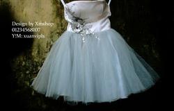 Ảnh số 98: váy dạ hội váy công chúa - Giá: 505.500.500