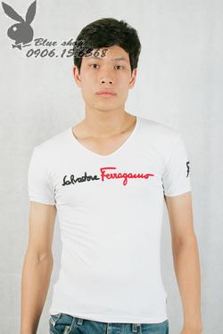 Ảnh số 3: áo phông - Giá: 150.000