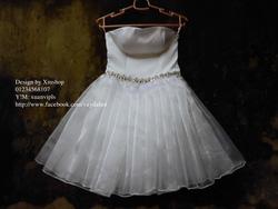 Ảnh số 75: váy dạ hội váy công chúa - Giá: 505.500.500