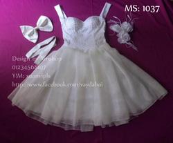Ảnh số 64: váy dạ hội váy công chúa - Giá: 505.500.500