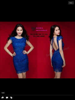 Ảnh số 20: váy ren - Giá: 650.000
