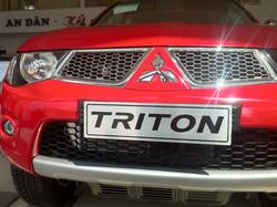 Ảnh số 31: Triton GLS - Giá: 690.360.000