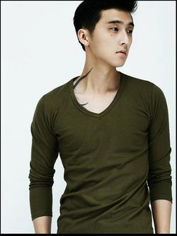 Ảnh số 21: áo thun cổ tim - Giá: 120.000