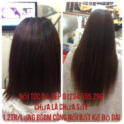 Ảnh số 94: tóc - Giá: 1.200