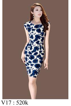 Ảnh số 17: Váy đầm , đủ size - Giá: 520.000