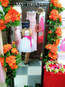 Ảnh số 5: váy dạ hội váy công chúa - Giá: 505.500.500